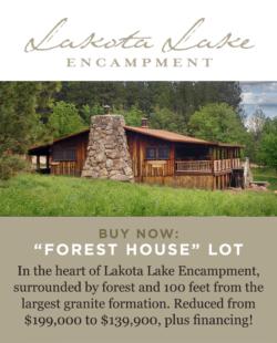 LakotaLakeLotsForest_House